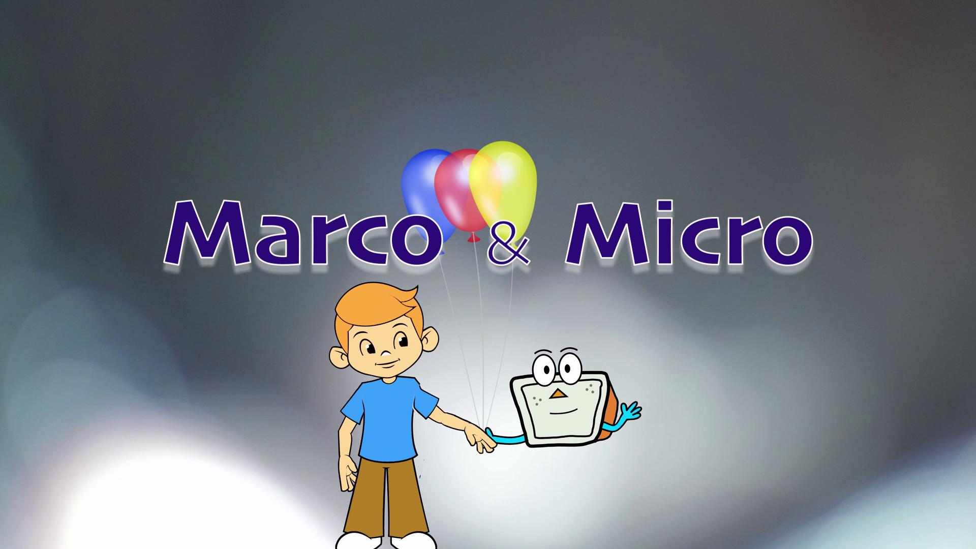 Marco e Micro